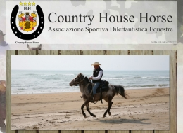 COUNTRY HOUSE HORSE (VR)